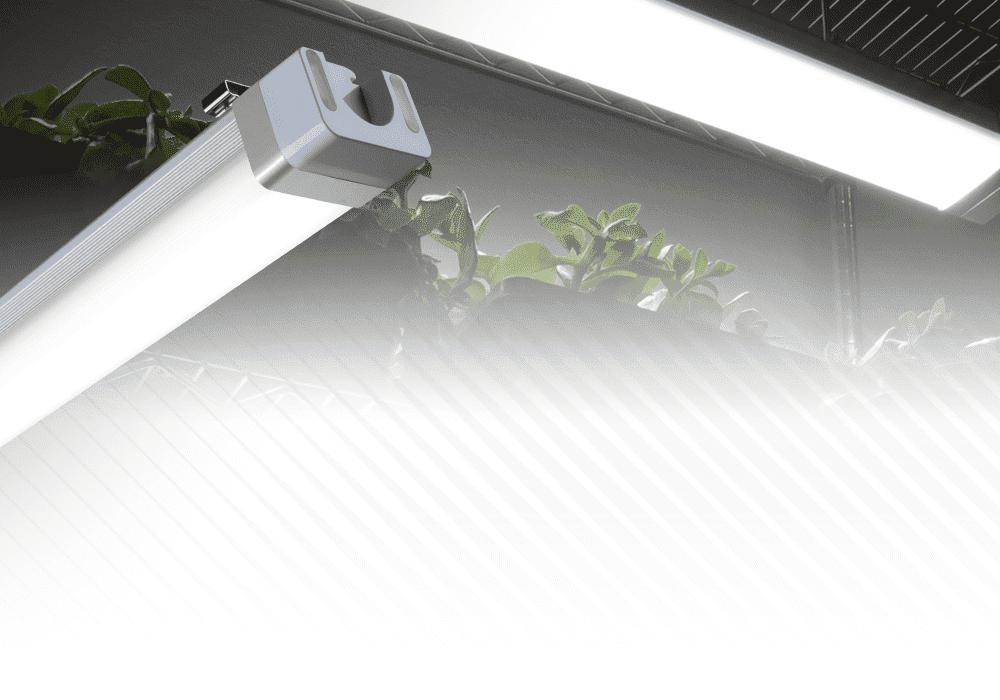 Germinator High output LED grow light