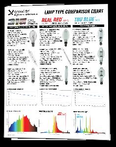 Lamp Type Comparison