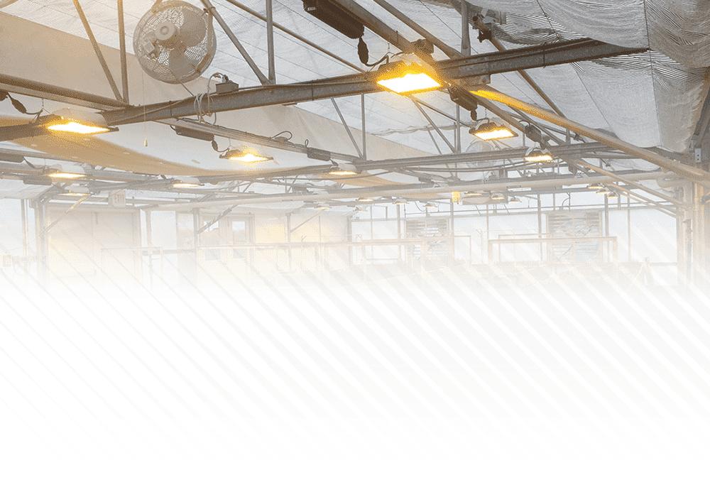 HSE-CONVEX SE GROW LIGHT SYSTEM