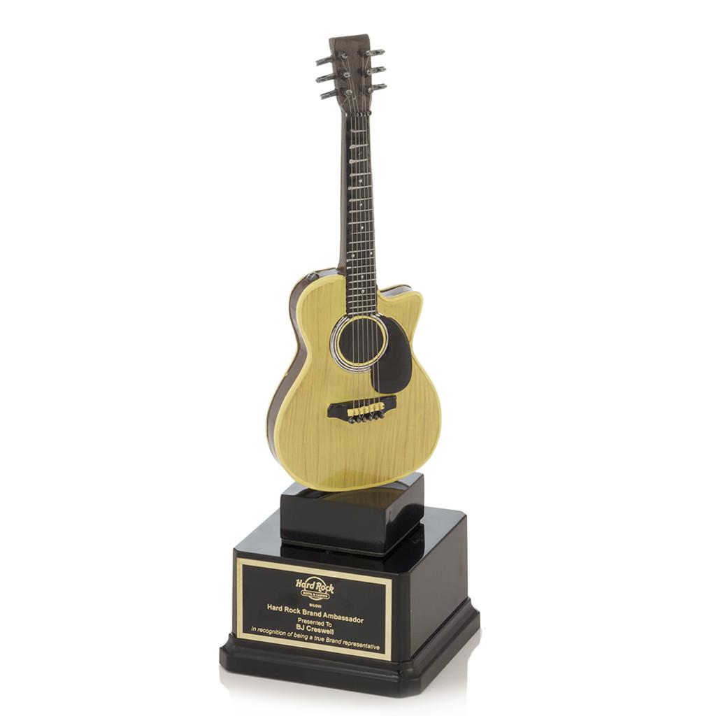Acoustic Guitar Award