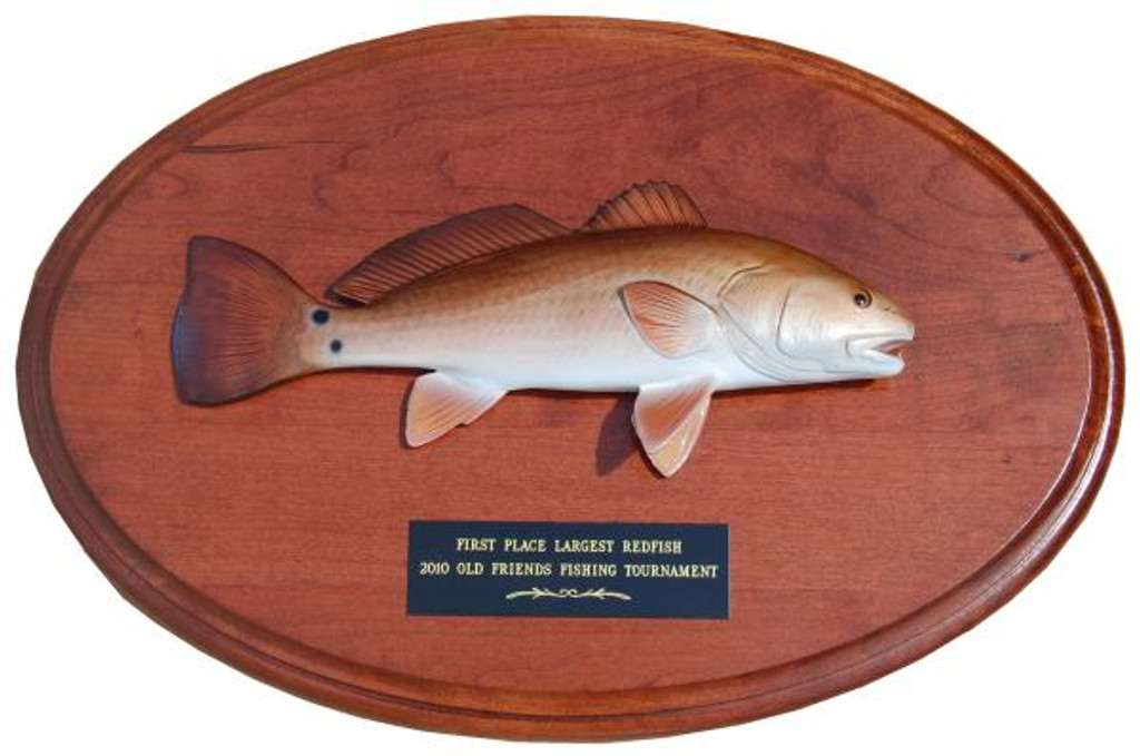 Redfish Trophy Mount