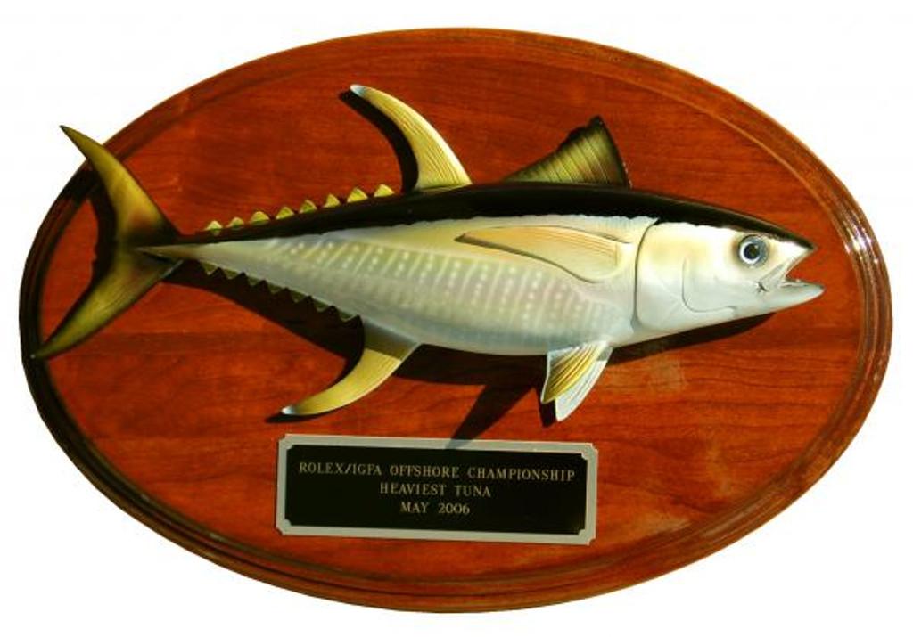 Yellowfin Tuna Trophy Fishing Mount