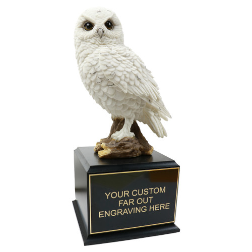 Wise Owl Trophy