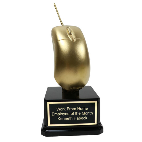 Golden Computer Mouse Trophy