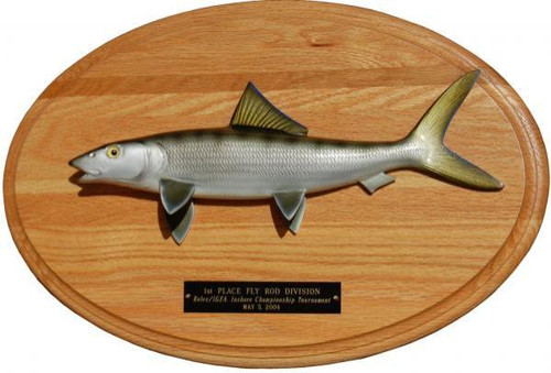 Bonefish Trophy Mount