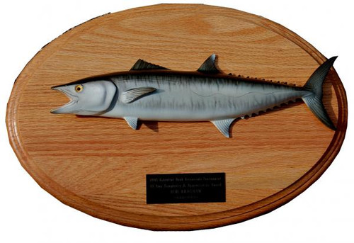 Kingfish Trophy Mount