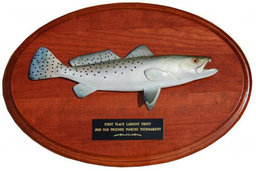 Seatrout Trophy Fish Mount