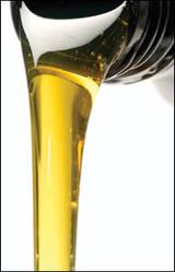 Sassy & Chic Luxury Body Oil