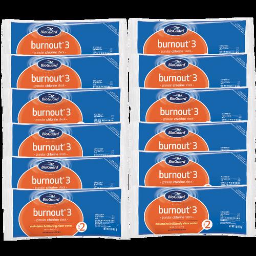 BioGuard Burnout 3 Shock (12 Bags, 12 lbs.) (22808BIO-12pk)