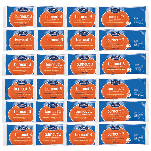 BioGuard Burnout 3 Shock (24 Bags, 24 lbs.) (22808BIO-24bags)