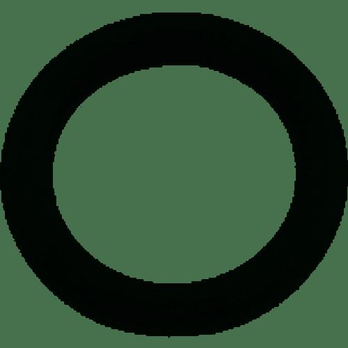 Pentair O-Ring, U9-359 (PAC-061-4000)
