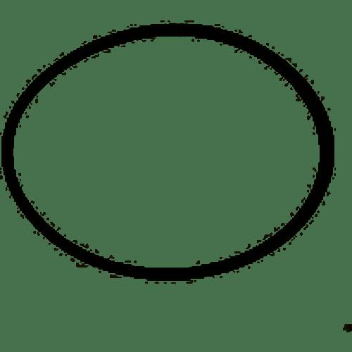 Zodiac O-Ring Pot Lid R0558800 (TLD-101-5043)