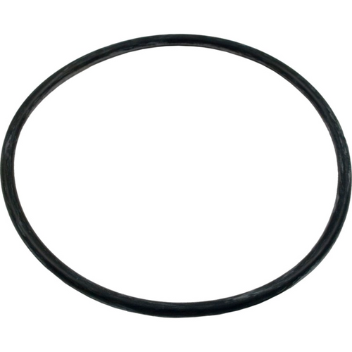 Pentair Ultra-Flow Volute O-Ring 39006000 (AMP-101-1012)