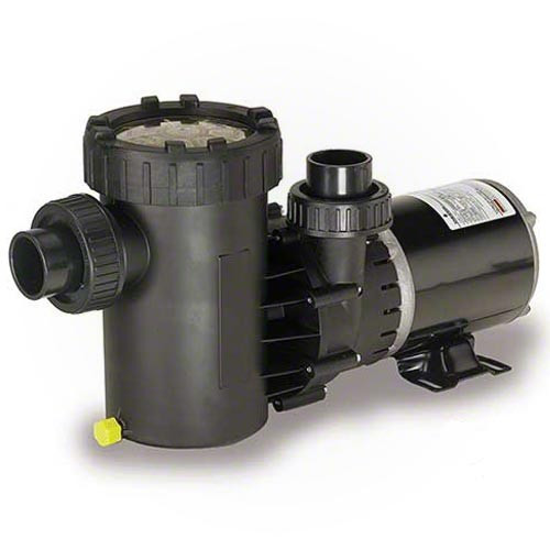 Speck Pumps E71-III, 1 HP, 2 Spd, Vertical Pump (AG192-2100S-VST)