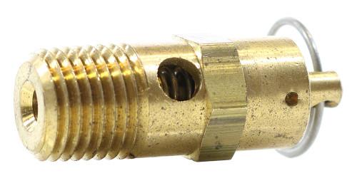 Pentair Brass Pressure Relief Valve, 1/4 Inch NPT 350087 (PAC-101-0110)