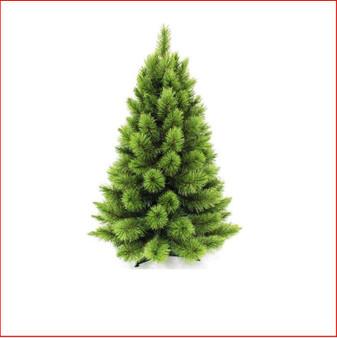 Pitch Pine 91cm