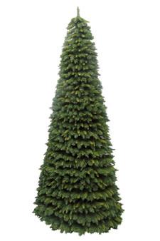 New Hampshire Cone Tree 8ft