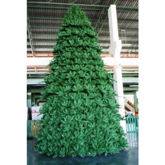 Paramount Spruce Tree Outdoor 6m