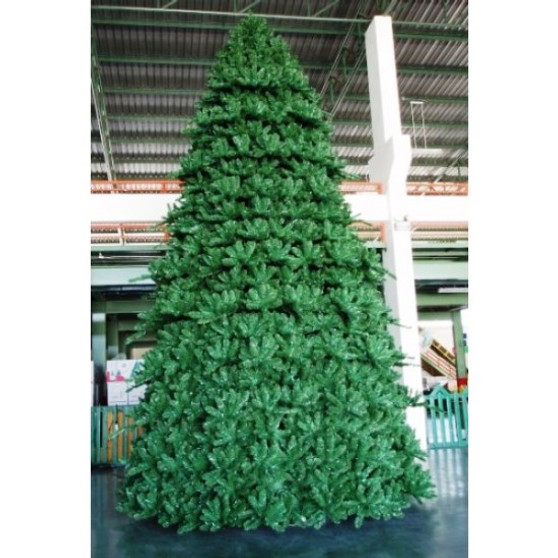 Paramount Spruce Tree Outdoor 6m