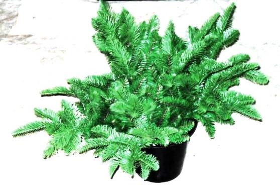 Christmas Bush Pot Filler