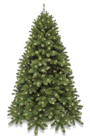 6ft Hinged Scandia Spruce Pre Lit with 320 Warm White LEDs