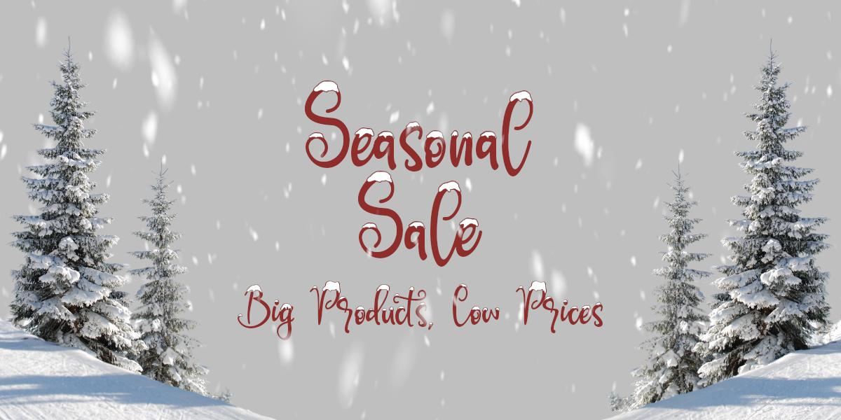 seasonal-sale-2.jpg
