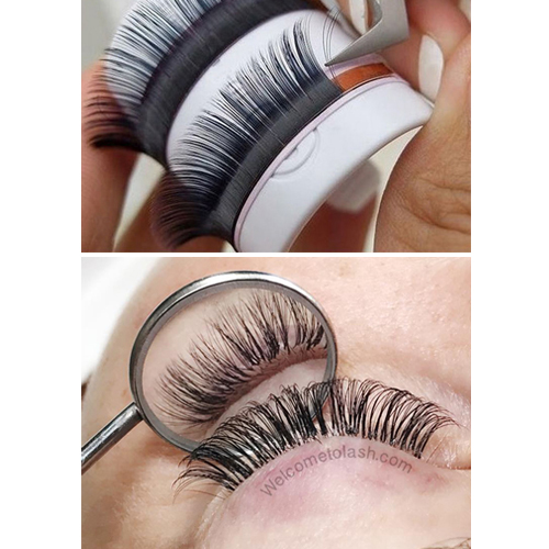 Single Volume D Curl Premium Mink Eyelash Extension Tray 05 or 07