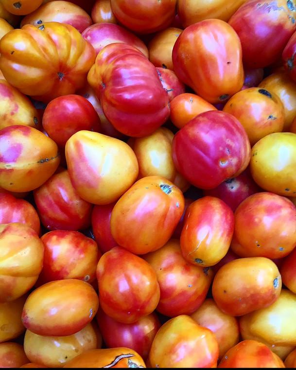 Polish pastel tomato seeds