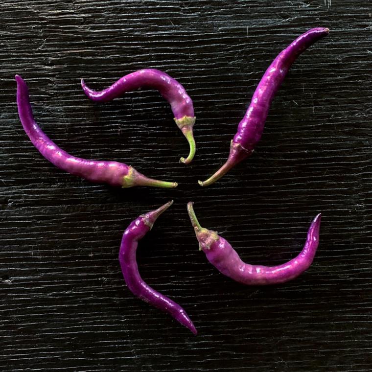 Buena Mulata Pepper Seeds