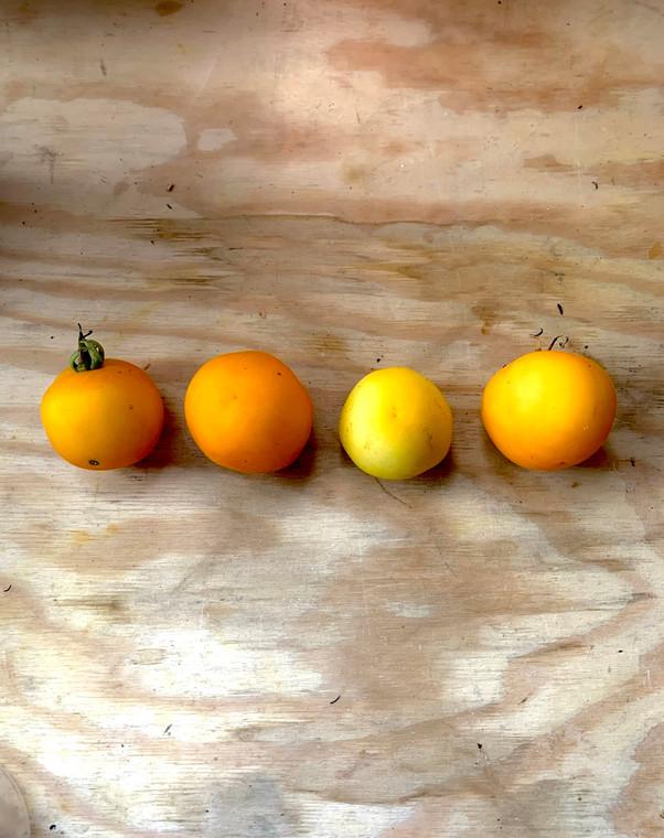 Hermanos peach tomato
