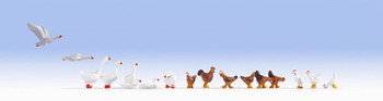 NOCH 15772 Chicken & Geese 00/HO