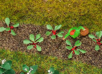 FALLER 181273 Rhubarb Plants (28) 00/HO Model Plants