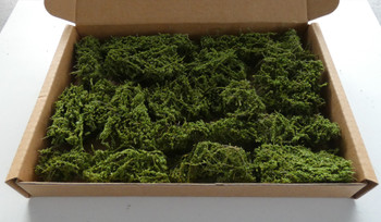 HSS HB2 -  Mixed Hedge & Bush Pieces (Medium Box)