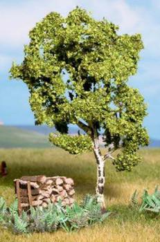 NOCH 21640 Birch Tree 11.5cm 00/HO/N
