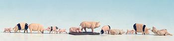 NOCH 15712 Pigs 'H0'