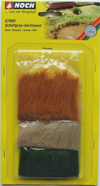 NOCH 07060 Assorted Reed Grass