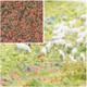 BUSCH 7356 Flower Flocking 'Heather' 200ml
