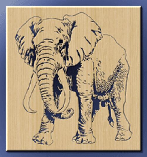 Elephant (WL011)
