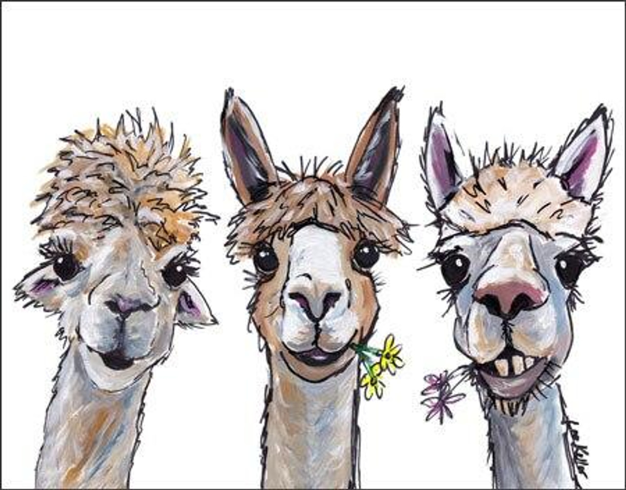 Alpaca Trio
