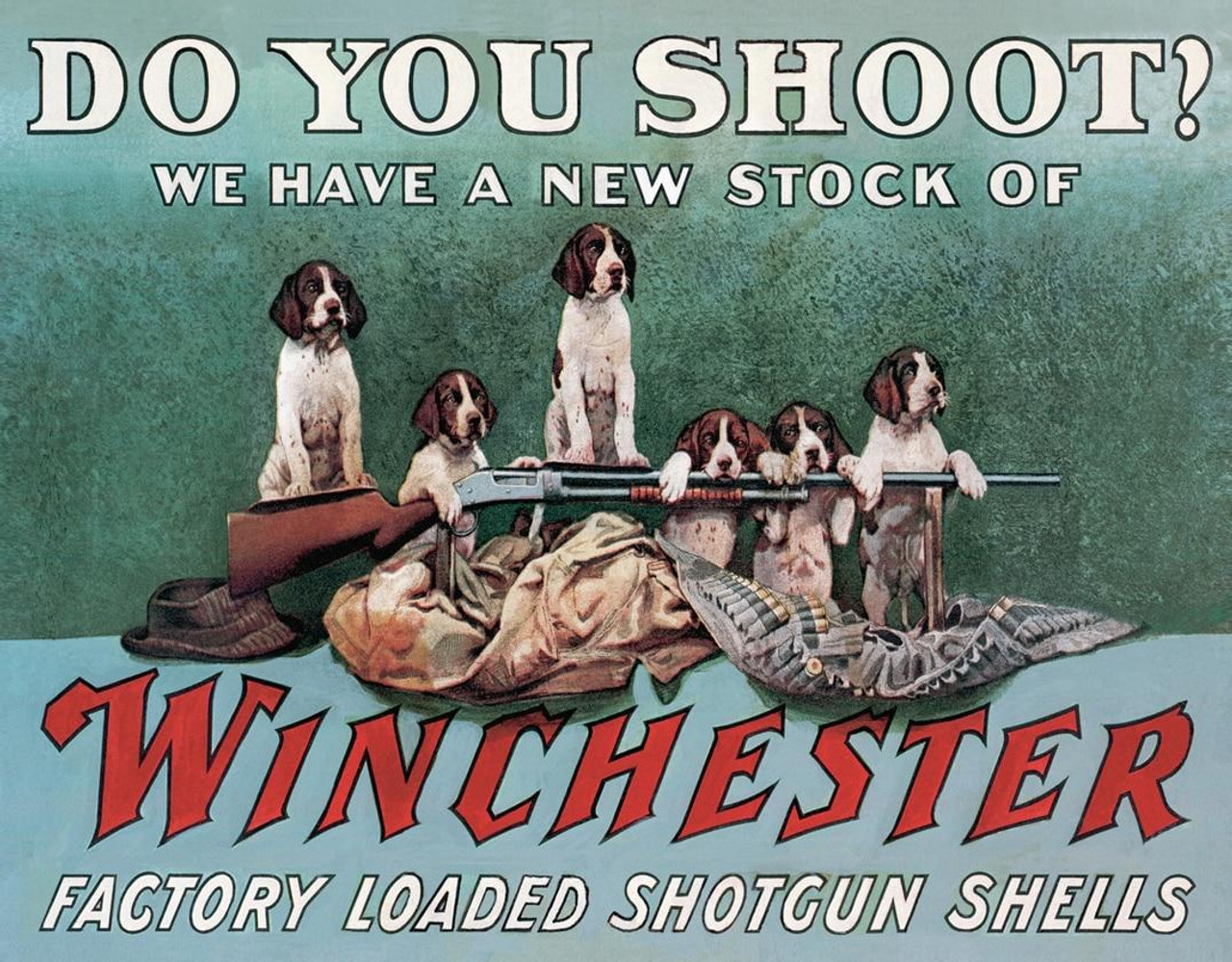 Winchester Winchester Shoot