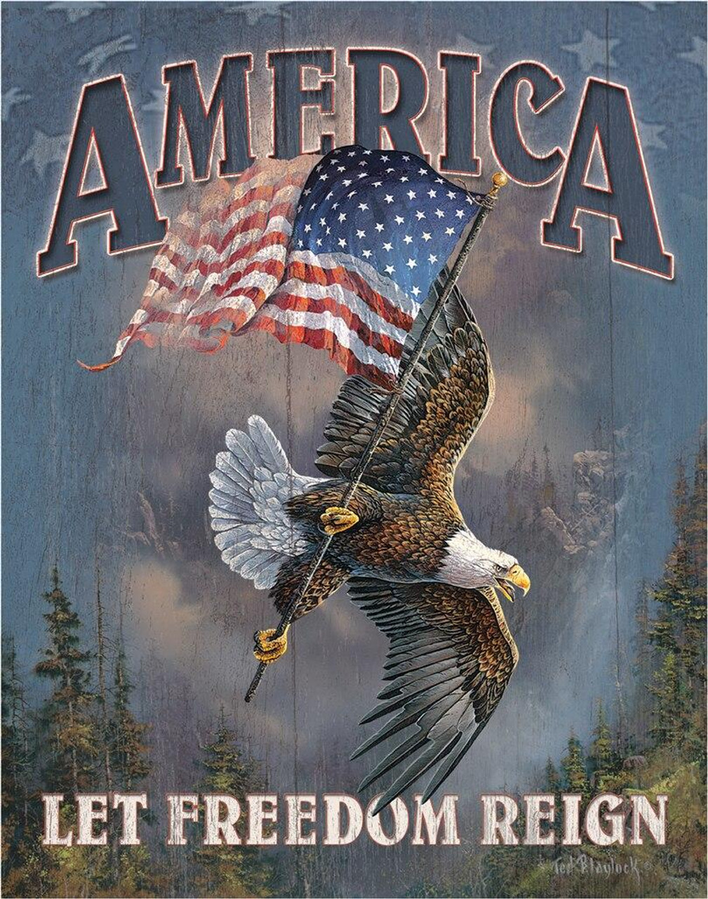 America - Let Freedom Reign