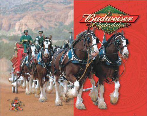 Anheuser-Busch Budweiser - Clydesdales
