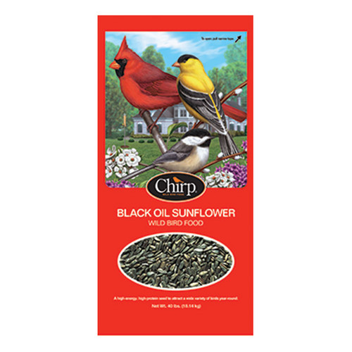 General Black OIl Sunflower Seeds - brand may vary