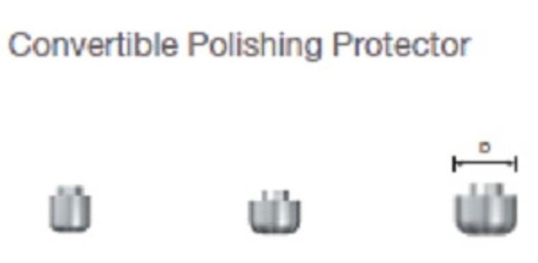 Convertible Polishing Protector