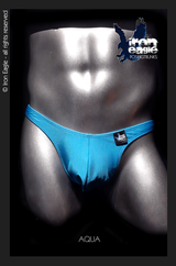 Iron Eagle Posing Trunks - Aqua Satin Lycra