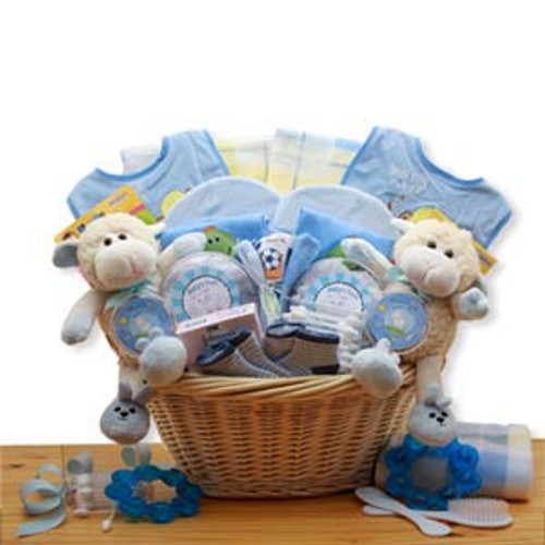 Double Delight  Twins New Baby Gift Basket - Blue