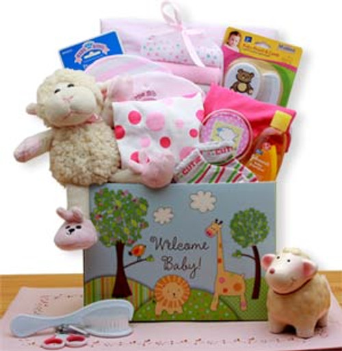 Welcome New Baby Gift Box - Pink