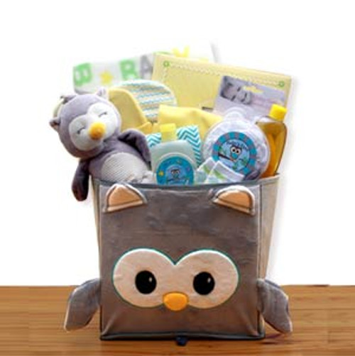A Little Hoot New Baby Gift Basket