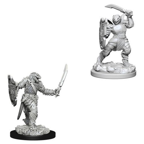 Dungeons & Dragons Nolzurs Marvelous - Dragonborn Female Paladin