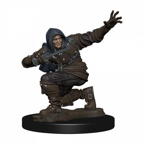 Pathfinder Battles Premium Painted - Human Rogue Male